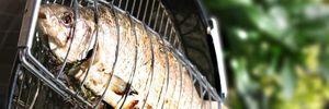 Estudio asocia la dieta rica en pescado con huesos más fuertes