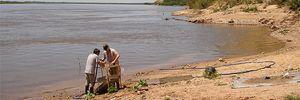 DESCUBRIMIENTO: A orillas del Paraná pescaron un dorado de 8 millones de años de antiguedad